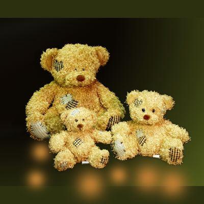 Gấu bông 004