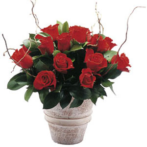 dịch vụ, Red Rose Arrangement