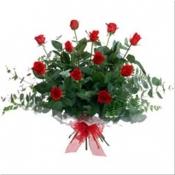 12 Medium Roses Gift Presentation