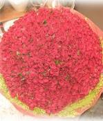 999 Bông Hồng Đỏ