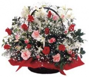 Arrangement of Christmas (red and white)