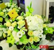 Hoa chúc mừng 065