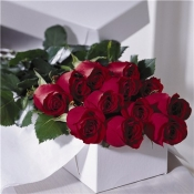 Long Setem roses  in a vase, box or basket