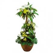 Royal Plant Arrangement with Flower