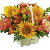 The FTD Happy Blooms Basket