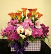 Hoa trong hộp 003